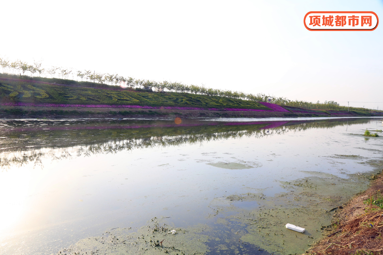 项城汾泉河国家湿地公园